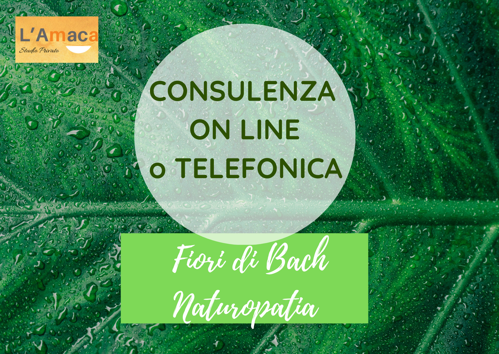 Fiori di Bach e Naturopatia ON LINE
